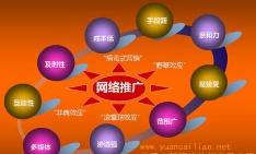 陕西天顺锦合--网络推广